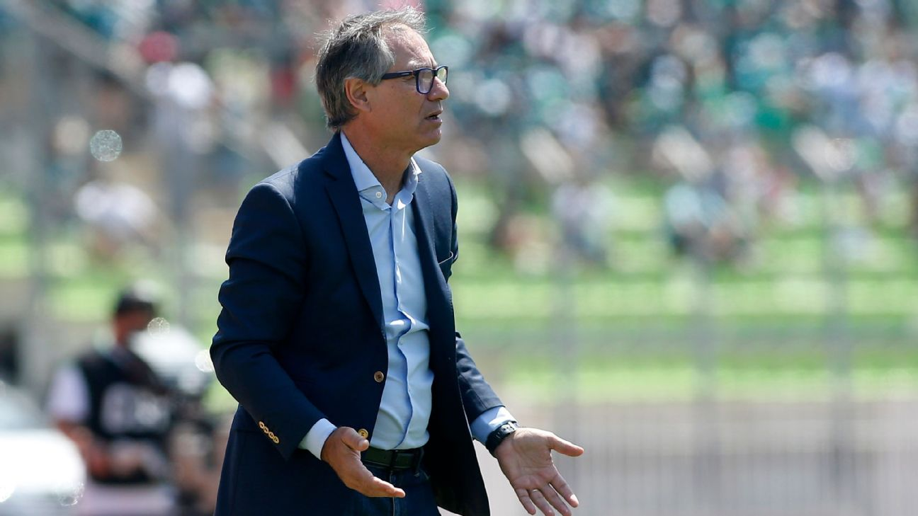 El fracaso de Ariel Holan en la Copa Libertadores